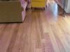 Prime Red Elm Plank